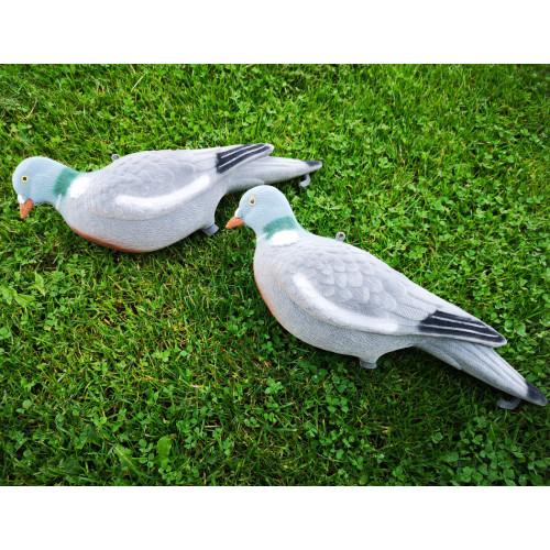 Pigeon decoy 5 pack Fully Flocked