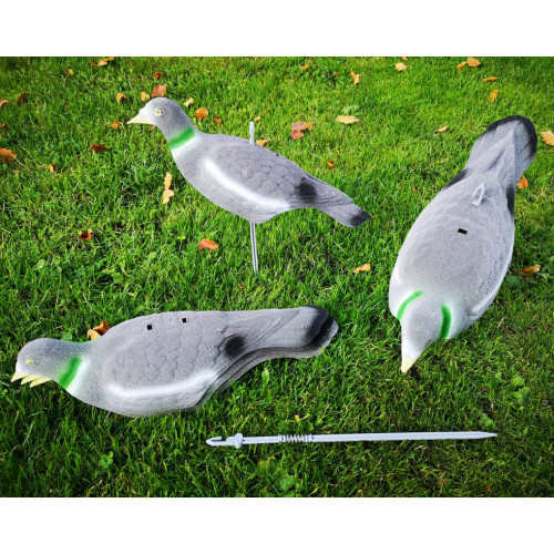 Pigeon decoys shells Flocked 5 pack