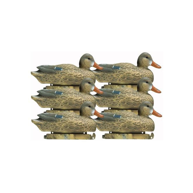 Tanglefree Pro Series Mallard 6 pack hens